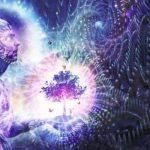 Chamanismo: elige un tótem y descubre con qué energía vibras hoy