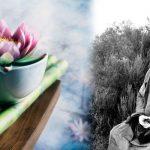 Frases y Enseñanzas del Budismo Zen. Meditación Zen (Zazen). Filosofía, Koans, Libros y Películas