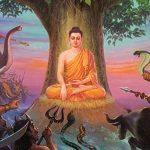 Budismo: Aprendé a identificar y a sanar las emociones que nos dañan