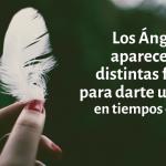 Señales y mensajes de los ángeles: ¿Plumas, olores, sonidos? ¿Cómo se manifiestan y comunican con nosotros?