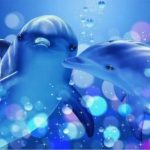 Delfines y Ballenas: conocé su sorprendente inteligencia, belleza y espiritualidad